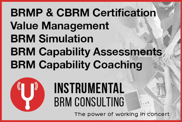 Instrumental BRM Consulting