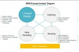 BRM Process Framework_