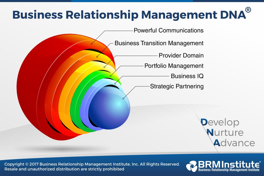 Business Relationship Management Dna Brm Institute