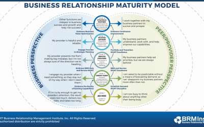Business Relationship Manager (BRM) Metrics