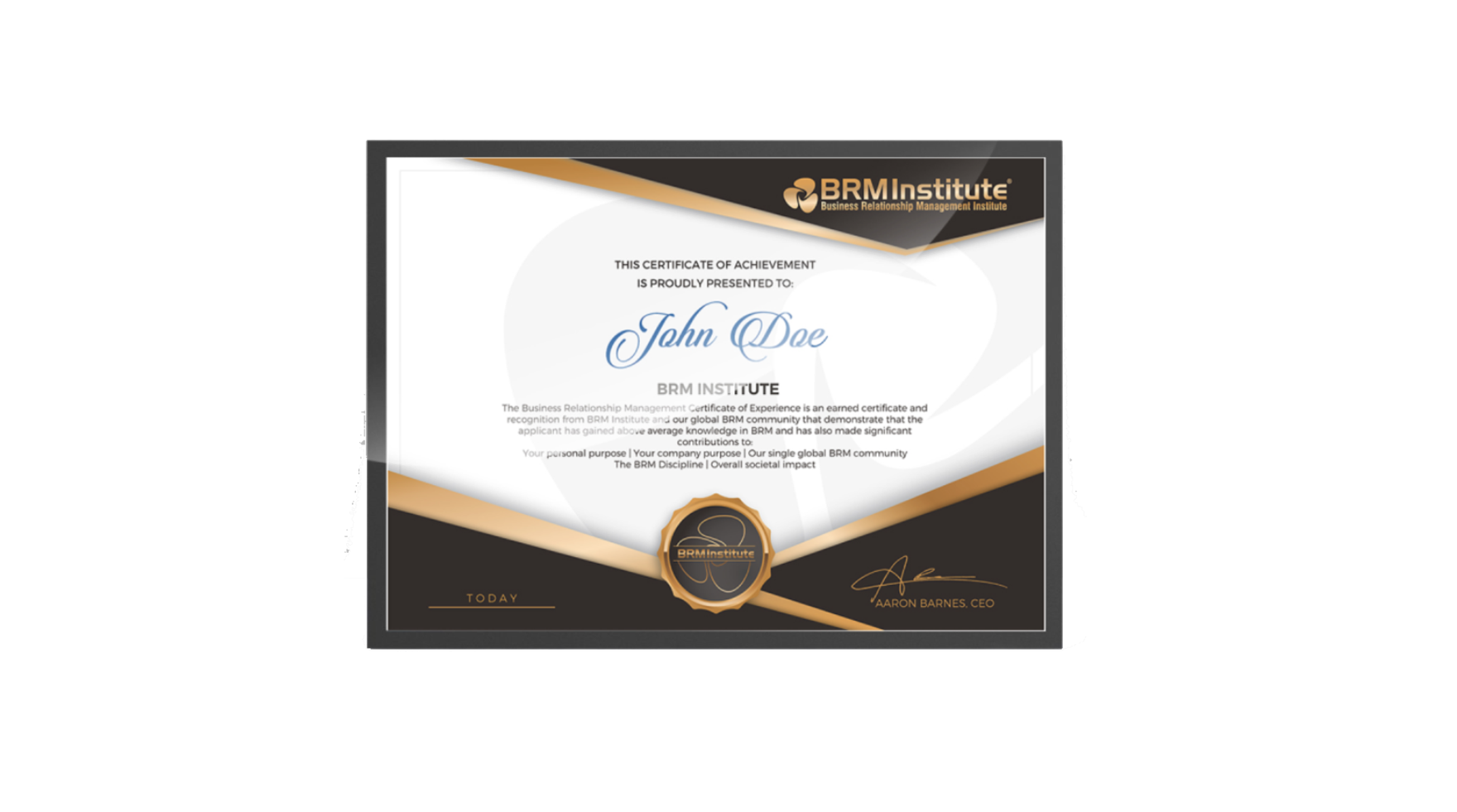 Business Relationship Management Certificate Of Experience Brm